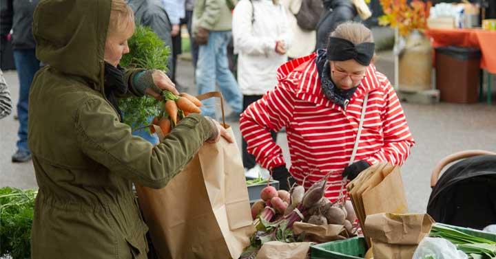Sadonkorjuumarkkinat – hyvää läheltä Kaupunkilaisten oma pelto – Herttoniemen ruokaosuuskunta